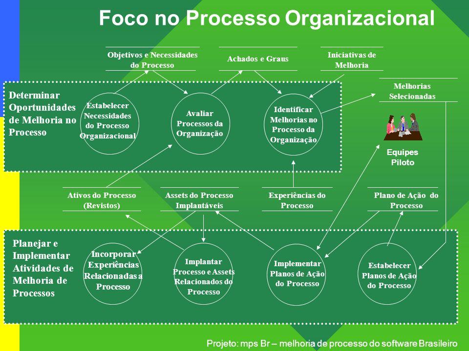 Projeto: mps Br – melhoria de processo do software Brasileiro Foco no Processo Organizacional Estabelecer Necessidades do Processo Organizacional Aval