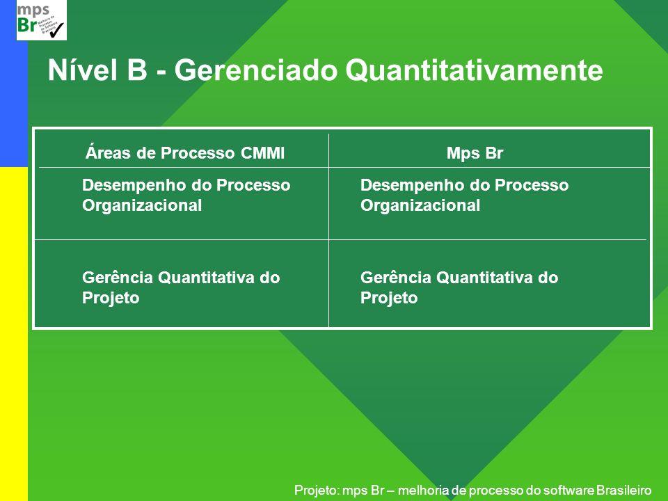 Projeto: mps Br – melhoria de processo do software Brasileiro Nível B - Gerenciado Quantitativamente Áreas de Processo CMMI Desempenho do Processo Org
