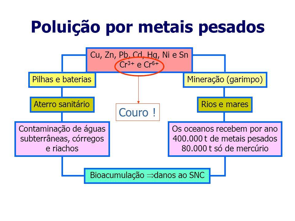 Poluição por esgotos doméstico e industrial Matéria orgânica biodegradável Explosão na população de microrganismos Consumo de oxigênio Bactérias, víru