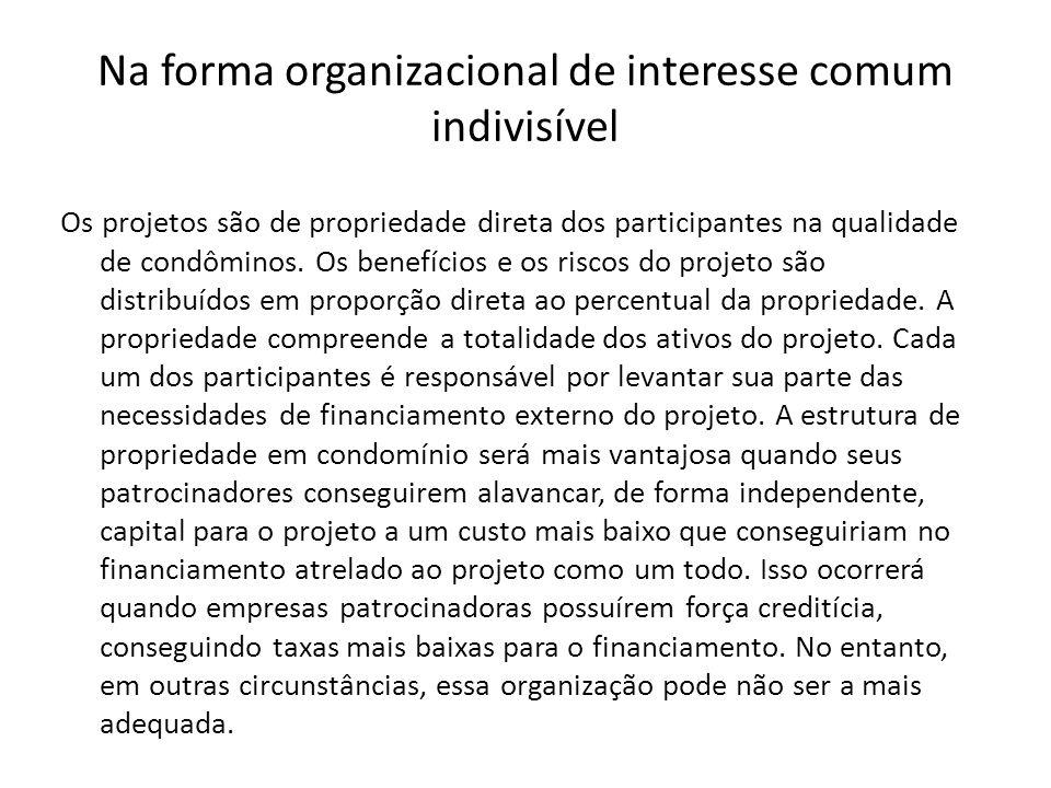 Na forma organizacional de interesse comum indivisível Os projetos são de propriedade direta dos participantes na qualidade de condôminos. Os benefíci