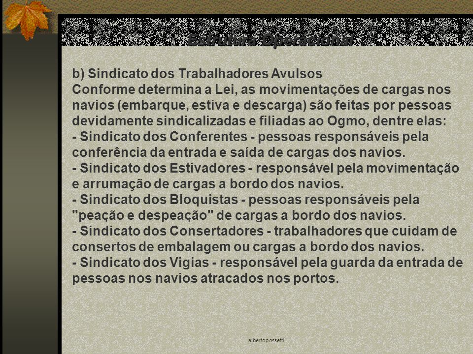 albertopossetti Estrutura Operacional b) Sindicato dos Trabalhadores Avulsos Conforme determina a Lei, as movimentações de cargas nos navios (embarque