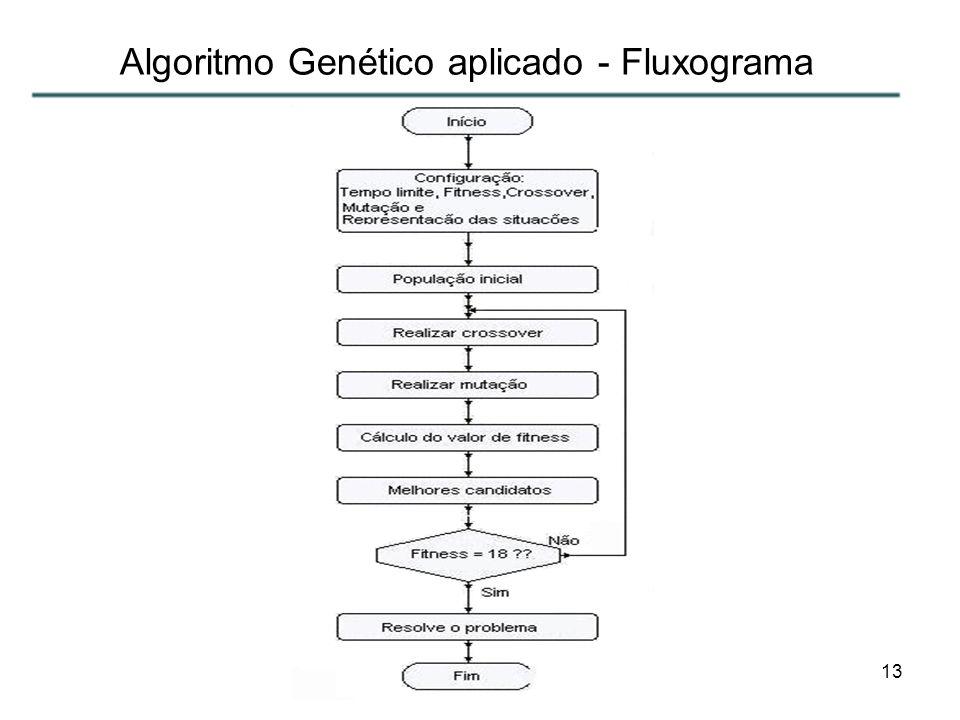13 Algoritmo Genético aplicado - Fluxograma