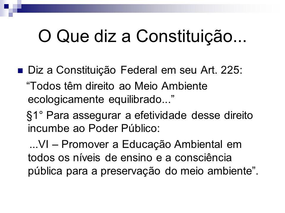 O Que diz a Constituição... Diz a Constituição Federal em seu Art. 225: Todos têm direito ao Meio Ambiente ecologicamente equilibrado... §1° Para asse