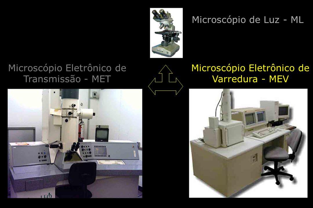 Microscópio de Luz - ML Microscópio Eletrônico de Transmissão - MET Microscópio Eletrônico de Varredura - MEV