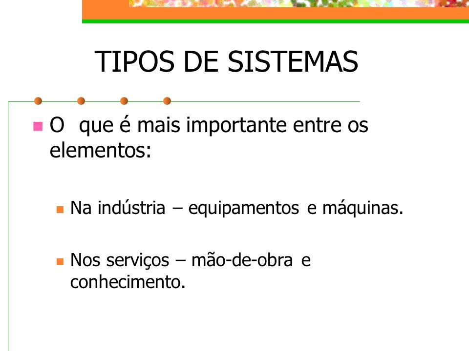 TIPOS DE SISTEMAS O que é mais importante entre os elementos: Na indústria – equipamentos e máquinas. Nos serviços – mão-de-obra e conhecimento.