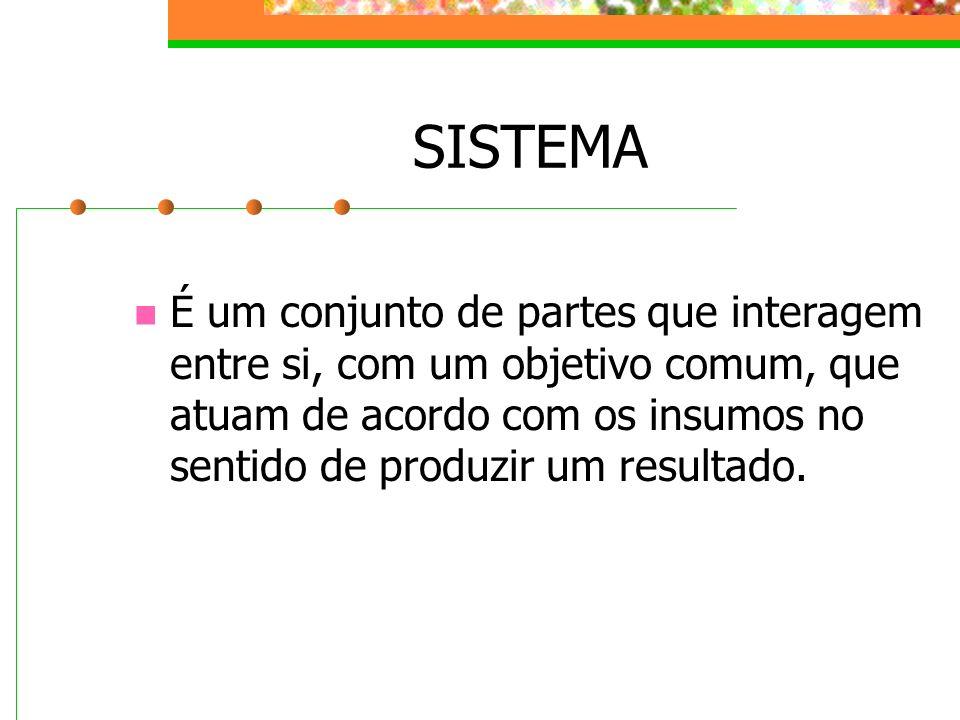SISTEMA É um conjunto de partes que interagem entre si, com um objetivo comum, que atuam de acordo com os insumos no sentido de produzir um resultado.