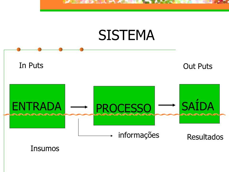 SISTEMA ENTRADA PROCESSO SAÍDA informações Insumos In Puts Resultados Out Puts