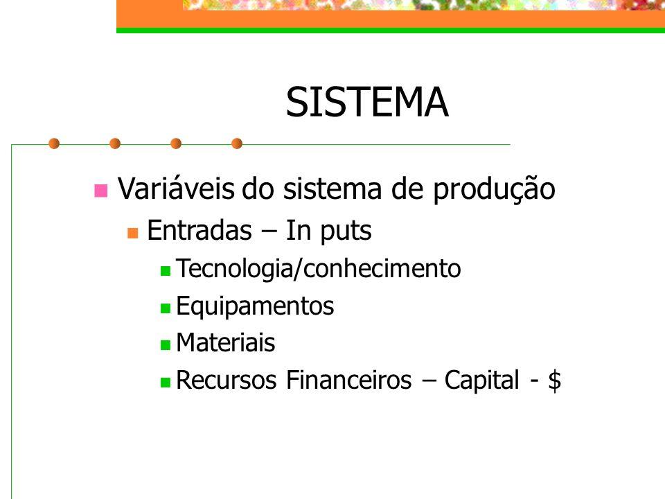 SISTEMA Variáveis do sistema de produção Entradas – In puts Tecnologia/conhecimento Equipamentos Materiais Recursos Financeiros – Capital - $