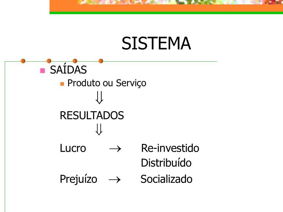 SISTEMA SAÍDAS Produto ou Serviço RESULTADOS Lucro Re-investido Distribuído Prejuízo Socializado