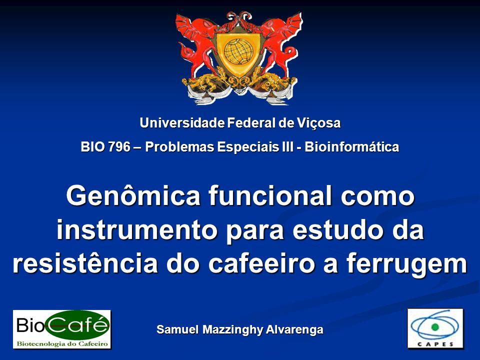 Genômica funcional como instrumento para estudo da resistência do cafeeiro a ferrugem Universidade Federal de Viçosa BIO 796 – Problemas Especiais III