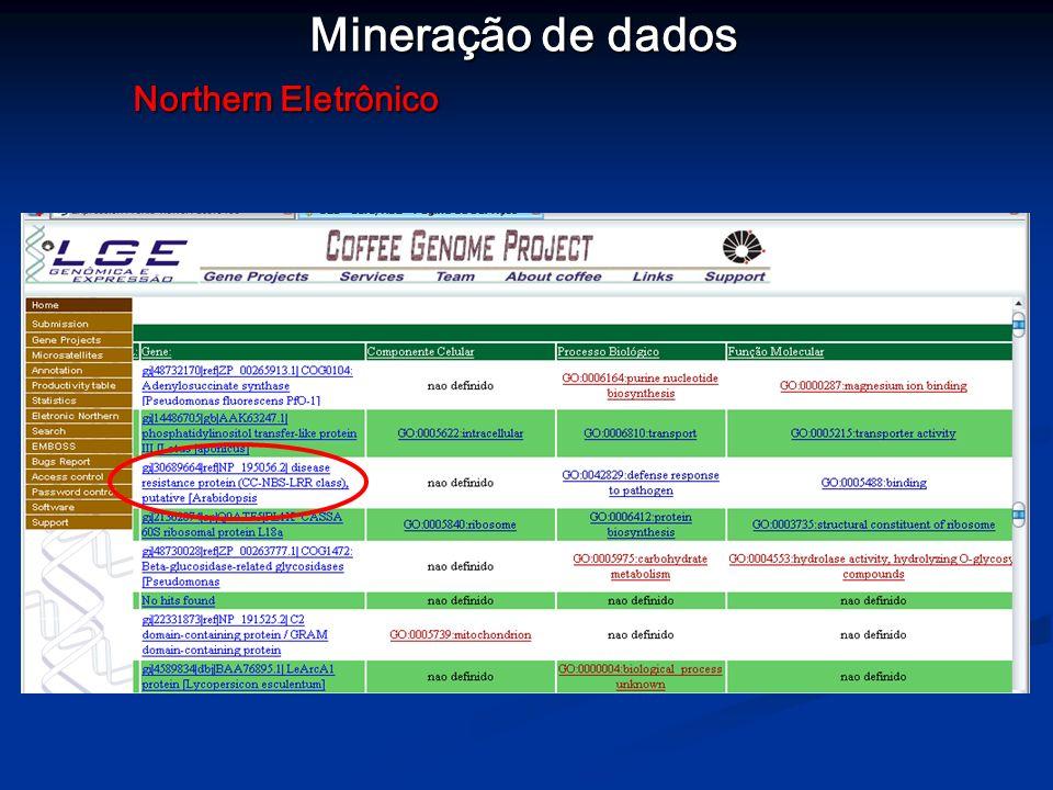 Mineração de dados Northern Eletrônico
