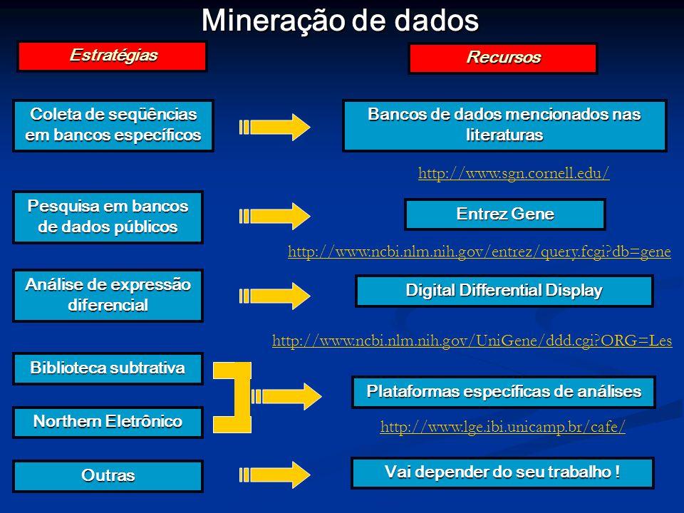 Mineração de dados Coleta de seqüências em bancos específicos