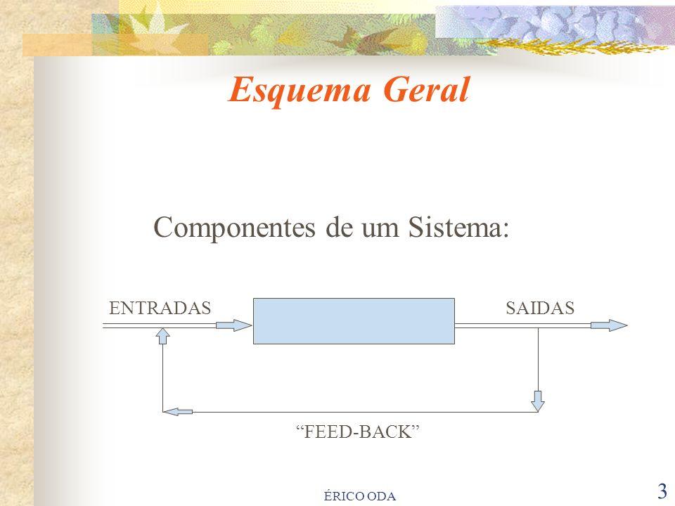 ÉRICO ODA 3 Componentes de um Sistema: ENTRADAS SAIDAS PROCESSO FEED-BACK PROCESSO Esquema Geral