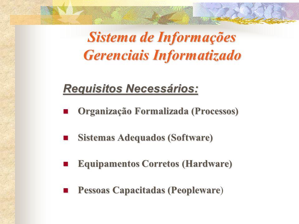 Sistema de Informações Gerenciais Informatizado Requisitos Necessários: Organização Formalizada (Processos) Organização Formalizada (Processos) Sistem