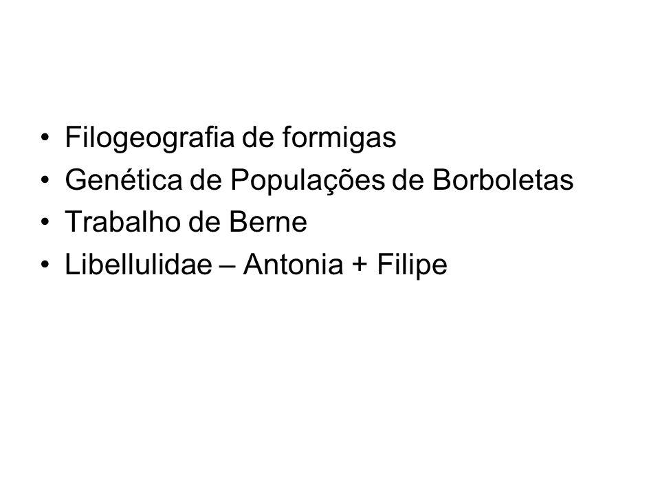 Filogeografia de formigas Genética de Populações de Borboletas Trabalho de Berne Libellulidae – Antonia + Filipe