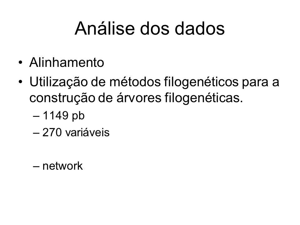 Análise dos dados Alinhamento Utilização de métodos filogenéticos para a construção de árvores filogenéticas. –1149 pb –270 variáveis –network
