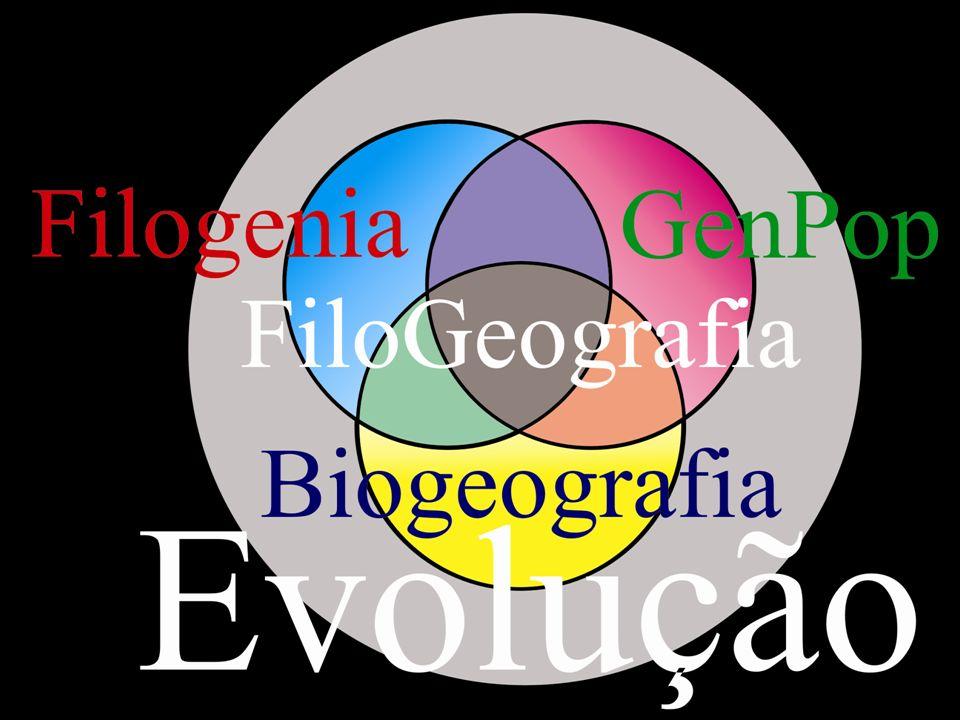 Análise dos dados Alinhamento Utilização de métodos filogenéticos para a construção de árvores filogenéticas.