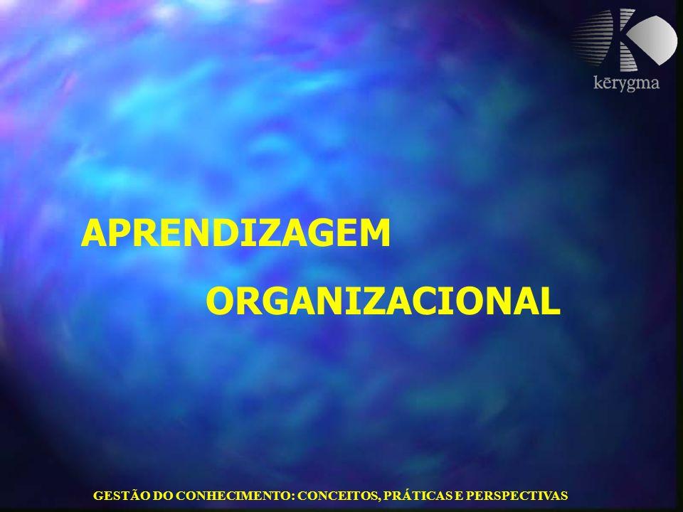 GESTÃO DO CONHECIMENTO: CONCEITOS, PRÁTICAS E PERSPECTIVAS APRENDIZAGEM ORGANIZACIONAL