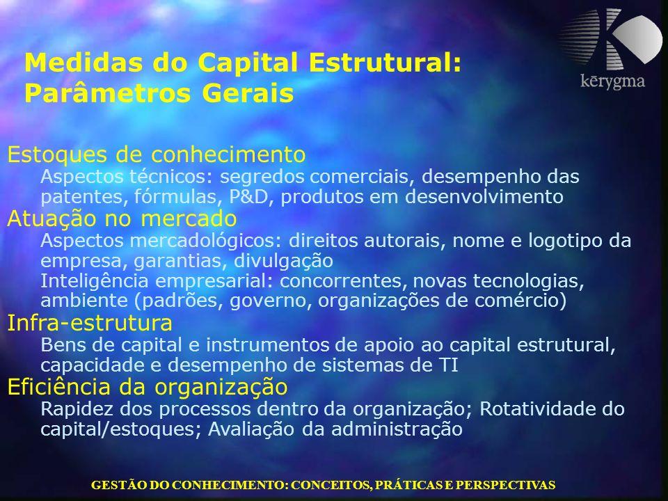 GESTÃO DO CONHECIMENTO: CONCEITOS, PRÁTICAS E PERSPECTIVAS Medidas do Capital Estrutural: Parâmetros Gerais Estoques de conhecimento Aspectos técnicos