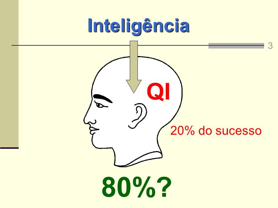 Inteligência QI 20% do sucesso 80%? 3