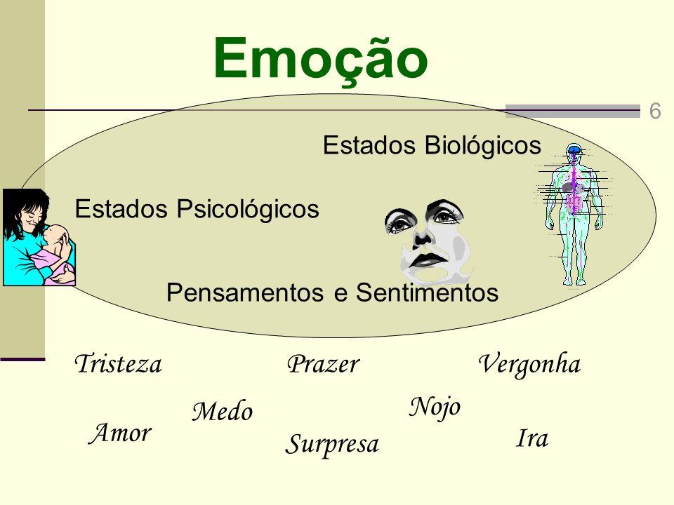 Visão mais ampla de Inteligência A Inteligência Emocional Conhecer as próprias emoções (autoconsciência) Lidar com emoções Motivar-se Reconhecer emoções nos outros Lidar com relacionamentos 7