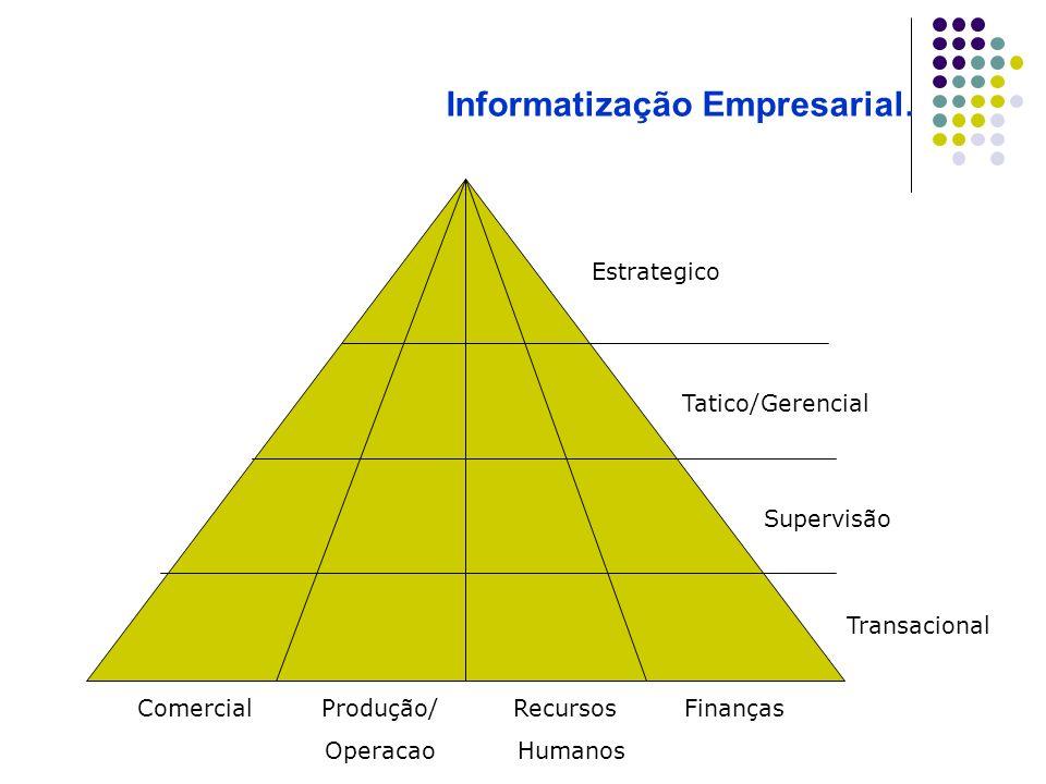 Comercial Produção/ Recursos Finanças Operacao Humanos Transacional Supervisão Tatico/Gerencial Estrategico Informatização Empresarial.