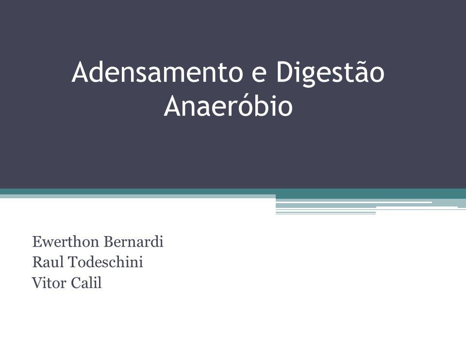 Adensamento e Digestão Anaeróbio Ewerthon Bernardi Raul Todeschini Vitor Calil