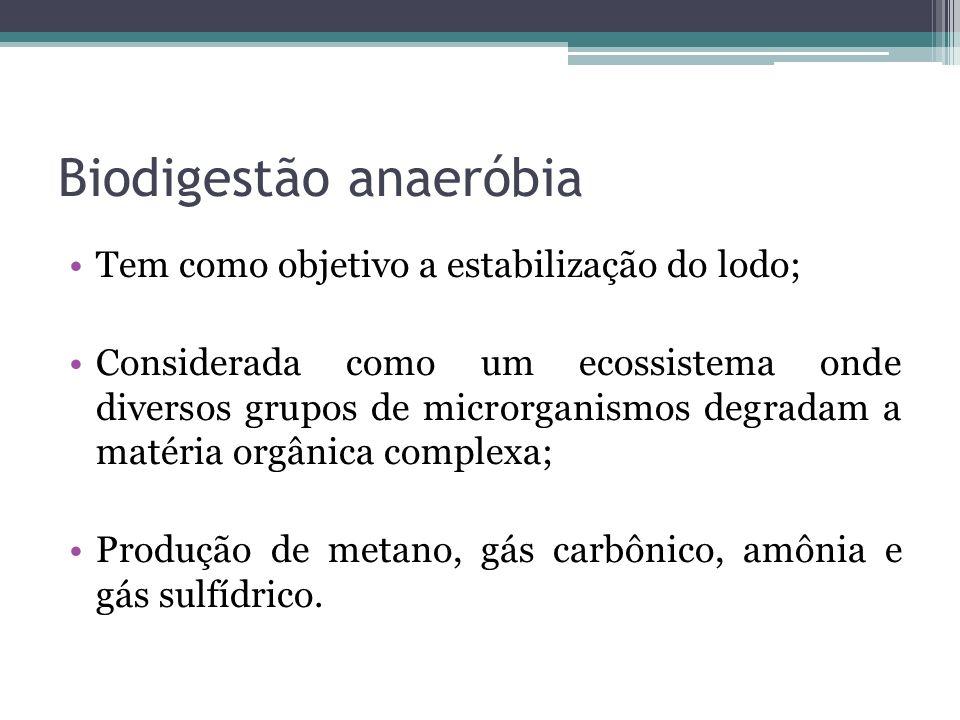 Biodigestão anaeróbia Tem como objetivo a estabilização do lodo; Considerada como um ecossistema onde diversos grupos de microrganismos degradam a mat