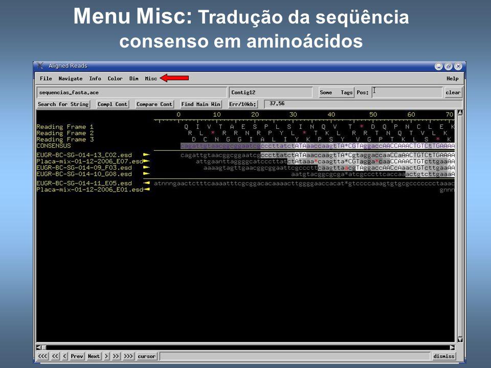Menu Misc: Tradução da seqüência consenso em aminoácidos