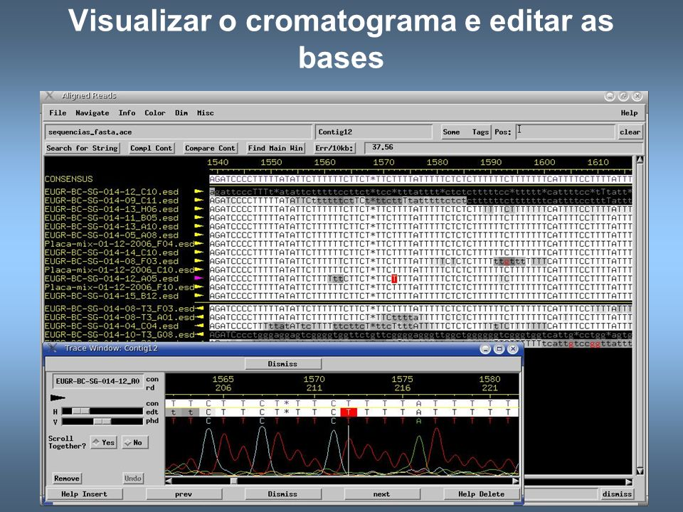 Visualizar o cromatograma e editar as bases