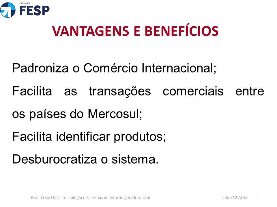 CONCLUSÃO Prof.