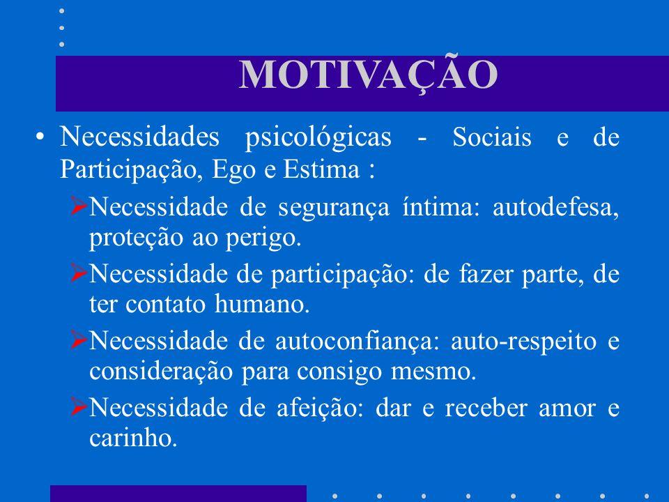 MOTIVAÇÃO Necessidades psicológicas - Sociais e de Participação, Ego e Estima : Necessidade de segurança íntima: autodefesa, proteção ao perigo. Neces