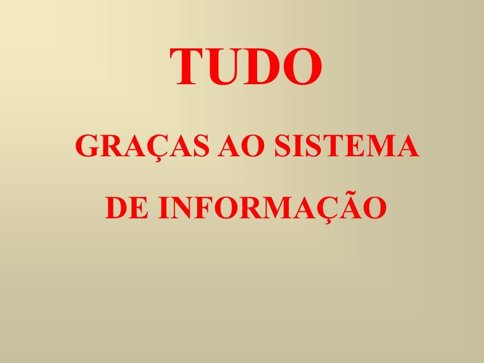 TUDO GRAÇAS AO SISTEMA DE INFORMAÇÃO