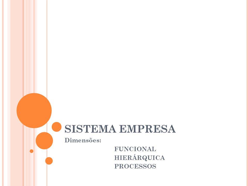 SISTEMA EMPRESA Dimensões: FUNCIONAL HIERÁRQUICA PROCESSOS