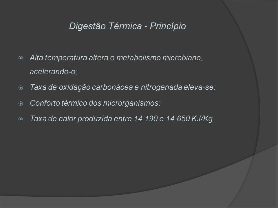 Digestão Térmica - Princípio Alta temperatura altera o metabolismo microbiano, acelerando-o; Taxa de oxidação carbonácea e nitrogenada eleva-se; Confo