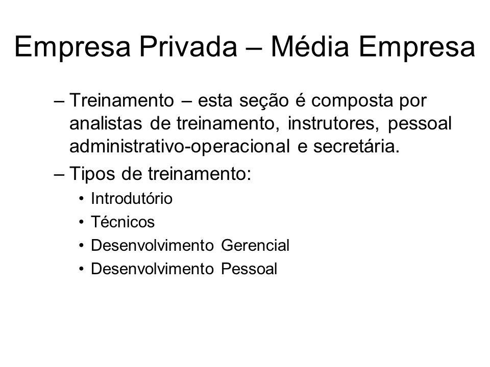 Empresa Privada – Média Empresa –Treinamento – esta seção é composta por analistas de treinamento, instrutores, pessoal administrativo-operacional e s