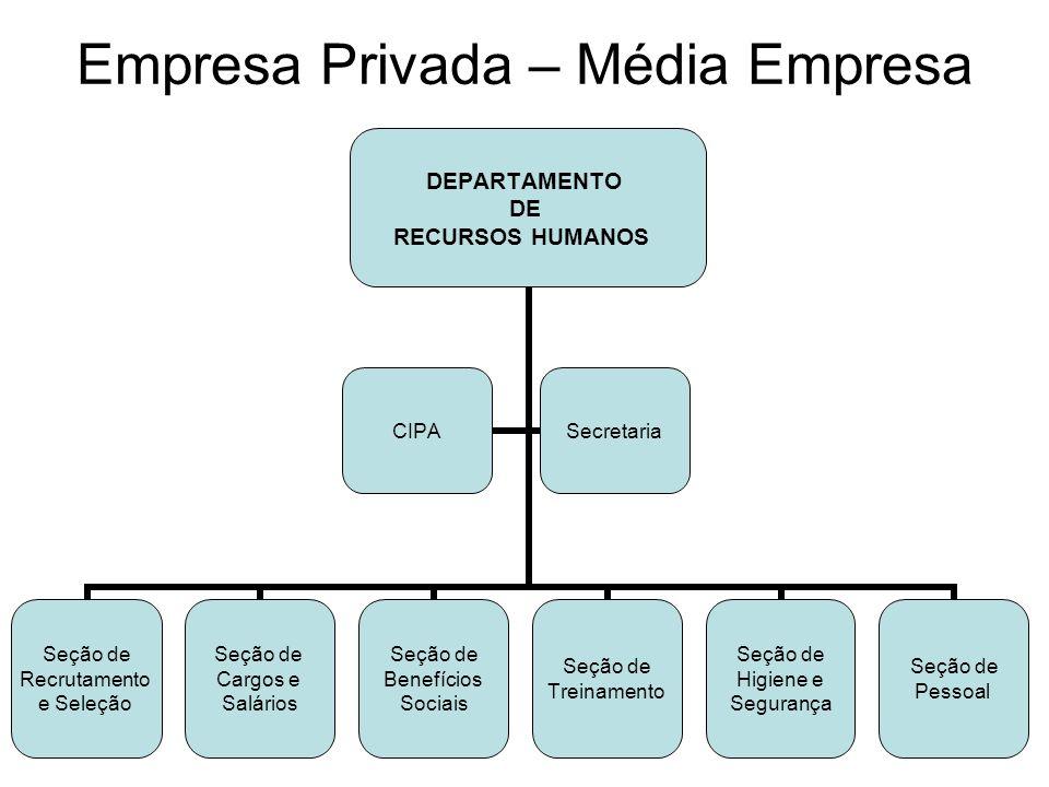 Empresa Privada – Média Empresa DEPARTAMENTO DE RECURSOS HUMANOS Seção de Recrutamento e Seleção Seção de Cargos e Salários Seção de Benefícios Sociai