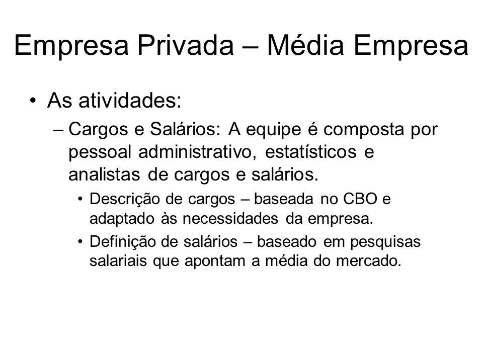 Empresa Privada – Média Empresa As atividades: –Cargos e Salários: A equipe é composta por pessoal administrativo, estatísticos e analistas de cargos