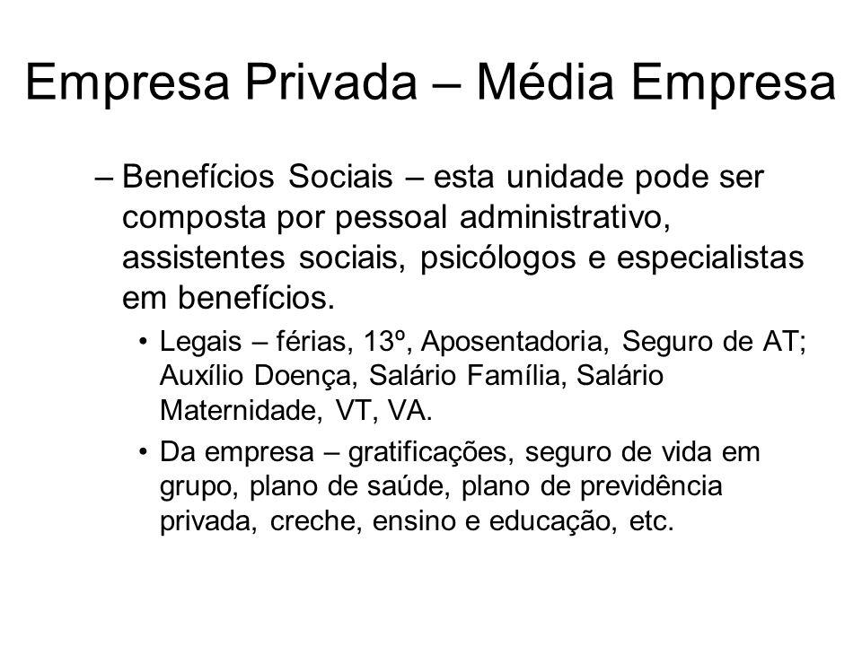 Empresa Privada – Média Empresa –Benefícios Sociais – esta unidade pode ser composta por pessoal administrativo, assistentes sociais, psicólogos e esp