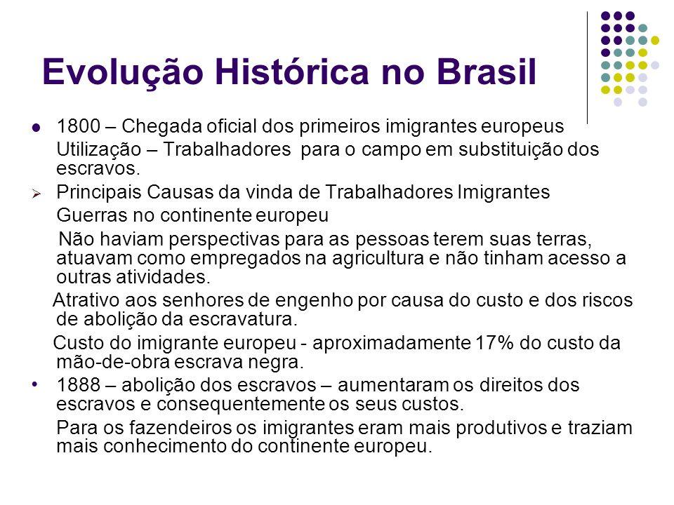 Evolução Histórica no Brasil 1800 – Chegada oficial dos primeiros imigrantes europeus Utilização – Trabalhadores para o campo em substituição dos escr