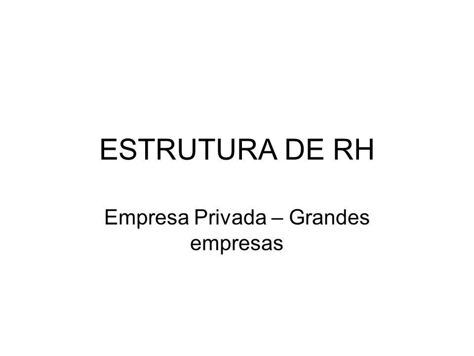 ESTRUTURA DE RH Empresa Privada – Grandes empresas