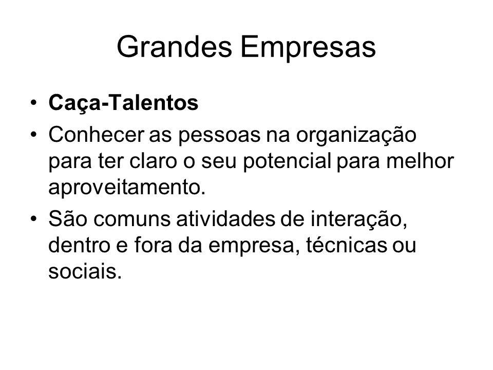 Grandes Empresas Caça-Talentos Conhecer as pessoas na organização para ter claro o seu potencial para melhor aproveitamento.