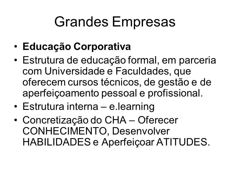 Grandes Empresas Educação Corporativa Estrutura de educação formal, em parceria com Universidade e Faculdades, que oferecem cursos técnicos, de gestão e de aperfeiçoamento pessoal e profissional.