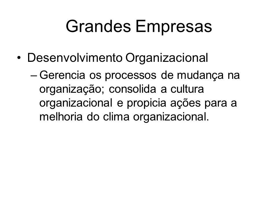 Grandes Empresas Desenvolvimento Organizacional –Gerencia os processos de mudança na organização; consolida a cultura organizacional e propicia ações para a melhoria do clima organizacional.