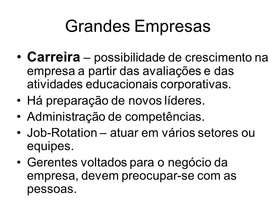 Grandes Empresas Carreira – possibilidade de crescimento na empresa a partir das avaliações e das atividades educacionais corporativas.