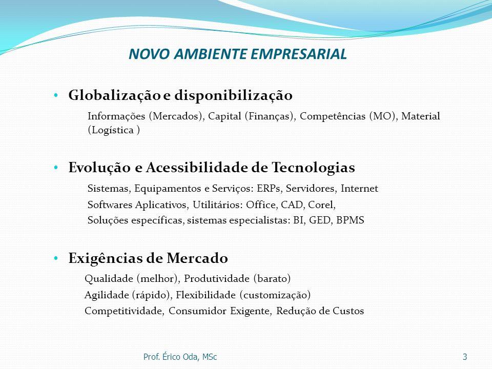 NOVO AMBIENTE EMPRESARIAL Globalização e disponibilização Informações (Mercados), Capital (Finanças), Competências (MO), Material (Logística ) Evoluçã