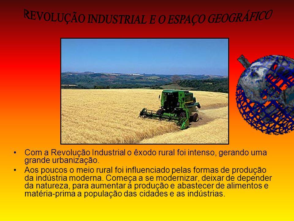 Com a Revolução Industrial o êxodo rural foi intenso, gerando uma grande urbanização. Aos poucos o meio rural foi influenciado pelas formas de produçã