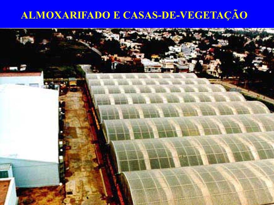 ALMOXARIFADO E CASAS-DE-VEGETAÇÃO