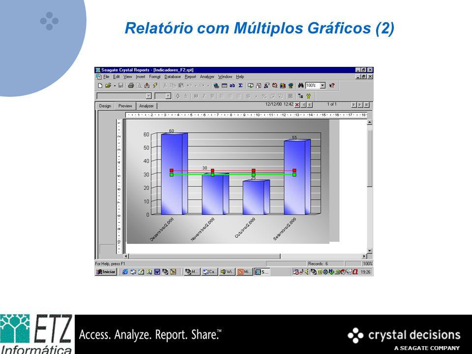 A SEAGATE COMPANY Relatório com Múltiplos Gráficos (2)