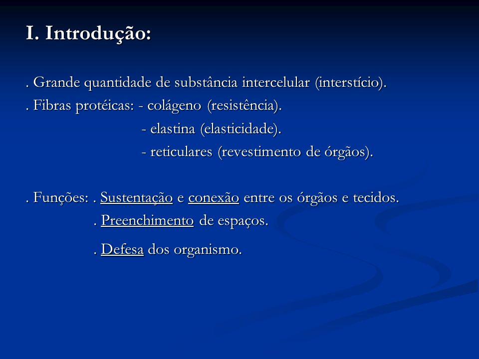 4.Tecido cartilaginoso:. Resistente porém flexível e avascular..